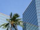 honolulu-downtown-02_20121003_1147726972
